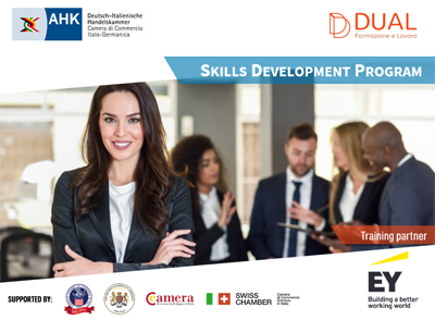 Skills Development Programme for young professionals