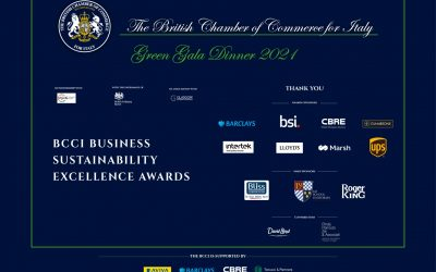 RECIPIENTS OF BCCI BUSINESS SUSTAINABILITY EXCELLENCE AWARDS 2021